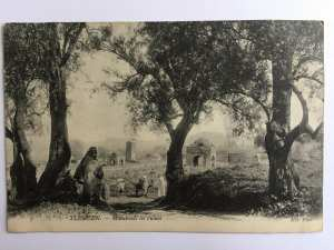 Tlemcen - Marabouts en ruines