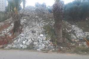 Ben Aknoun (Alger) - Arrêt sur Image: Déversement de chargements de gravats sur des palmiers