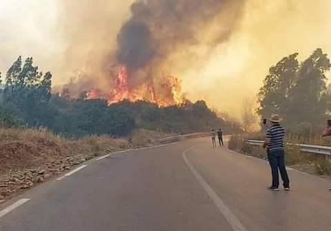 Situation des incendies déclarés à travers la wilaya de Tizi Ouzou le 09/08/2021 .situation arrêtée à 16h00