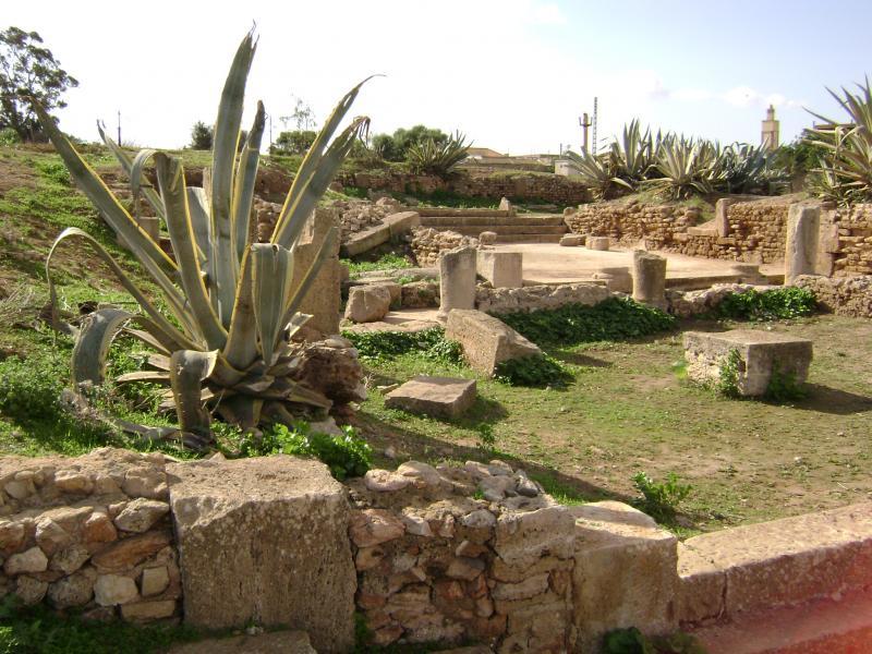 المنتدى الاول 02-3486-ruines-de-portus-magnus-a-bethioua