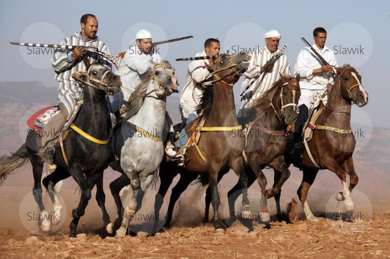 02-30304-le-cheval-a-l-honneur-jumenterie-de-tiaret