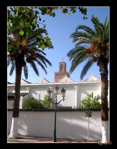 la Grande Mosqu�e de Tlemcen