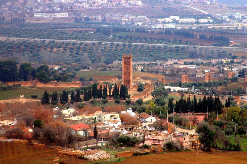 4250-mosquee-minaret-mansourah-tlemcen-et-dependances dans