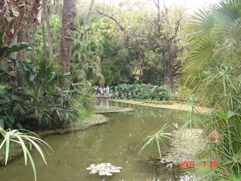 Jardin d 39 essais el hamma alger alger for Jardin olof palme alger