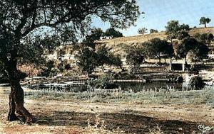 Hammam Bradaa (Héliopolis)