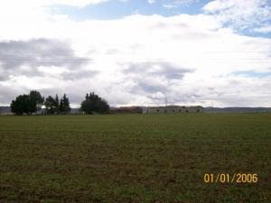 Champ Agricole près de Guelma