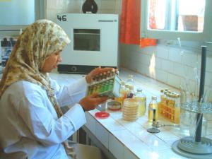 Laboratoire d'Hygiène d'El Bayadh