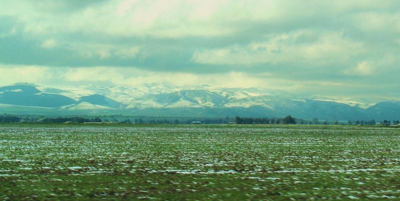50296-neige-exceptionnelle-entre-tlelat-et-el-braya-oran.jpg