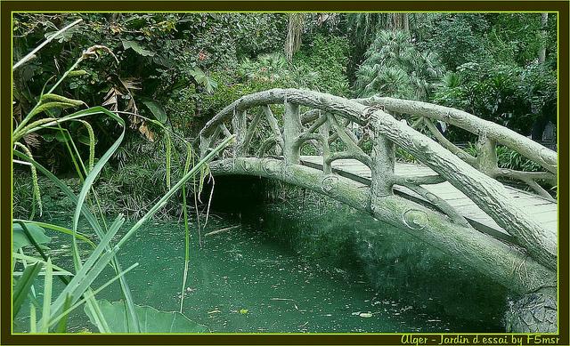 Alger - Petit Pont du Jardin d'Essai