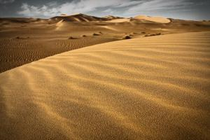 Sahara - Erg Occidental (Wilaya d'El Oued)