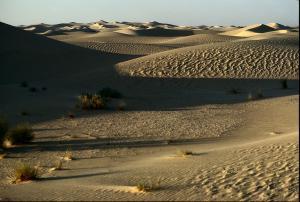 Le Sable à Perte de Vue (El Oued)