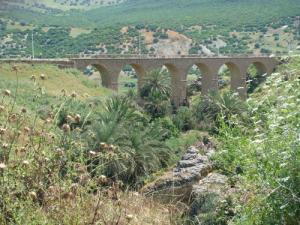 Un Pont à Souk Ahras