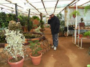 Magasin de Plantes à Tipaza