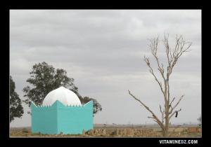 Wali au cimetière de Ain Oussara