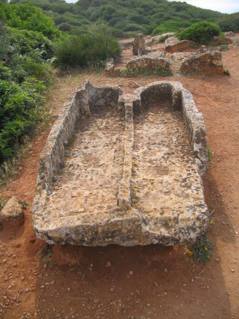 جمال مدينة تيبازه الجزائريه  6685-ruines-romaines-a-tipaza