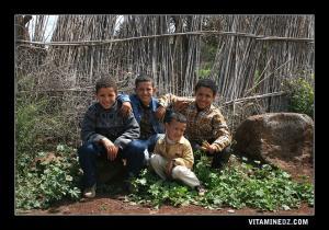 أطفال من دوار مدادحة على بعد ثلاث كيلومترات من بلدية تدماية (ولاية تلمسان)