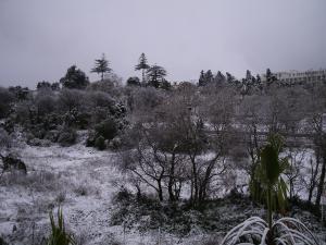منطقة حيدرة تحت الثلوج