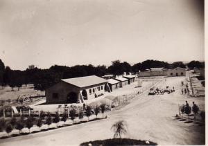 صورة قديمة لتربية البعير بمنطقة شرية