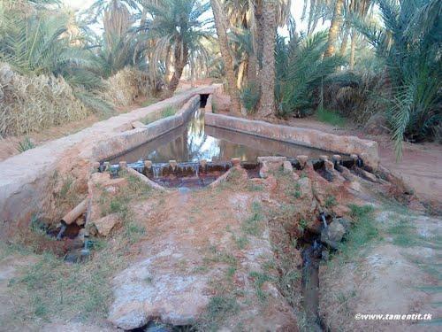 Kasria dans la commune de Tamantit (Wilaya d'Adrar)