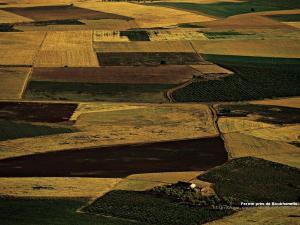 حقول زراعية قرب بوخنافيس