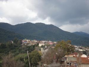 منظر شامل لمدينة  واد الزهور