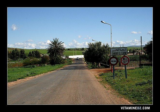 مدخل قرية شباط اللحم
