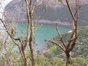 Plage les Aiguades près de Cap Carbon