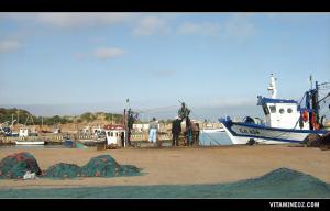 ميناء الصيد البحري قرب شاطئ المرسى الصغير