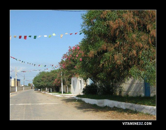 شارع بجوار شاطئ عين إبراهيم