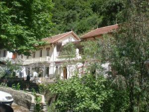 وادي القردة ببلدية شيفة