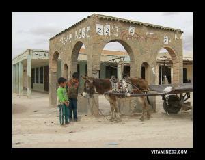 أطفال من بلدية سيدي عمرو