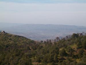 منظر من غابات عمي موسى من جبال بورقبة