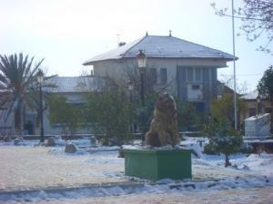 La poste de Mahdia (Wilaya de Tiaret)