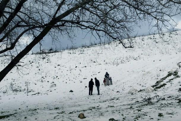 الثلوج بضواحي مدينة المدية