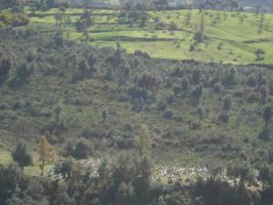 Région de Houra, Cimetière vu de l'ouest