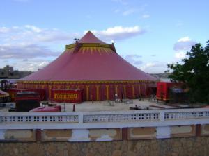 Le Cirque Florileggio à Djelfa