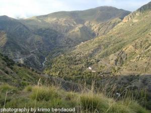 Oued El Bared Montagne de Lwaze