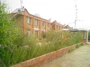 Station Thèrmale Hammam à Ain Skhouna (Wilaya de Saida)