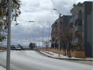La Route Nationale N°92 menant à Saida