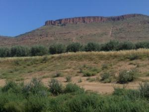 Vue sur la Montagne de Sidi Amar (Wilaya de Saida)