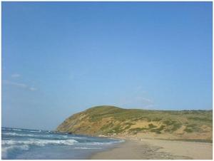 صورة من شاطئ