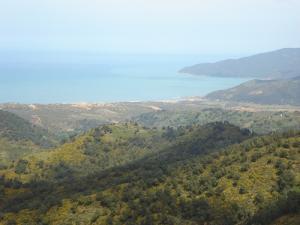 Plage et Forêt de Oued ZHour