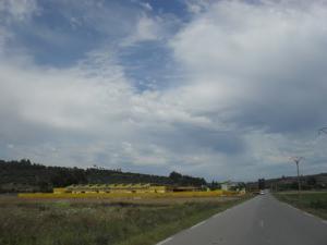 Route dans la périphérie de Ramdane Djamel (Wilaya de Skikda)