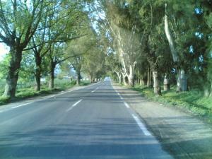 Entrée du village nommé Ramdane Djamel