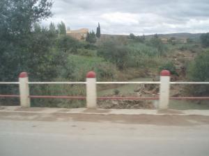 صورة من وادي العابد