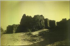 صورة لقصر قديم بضواحي منطقة ڨورارة