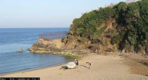 صورة من شاطئ عين عشير بولاية عنابة
