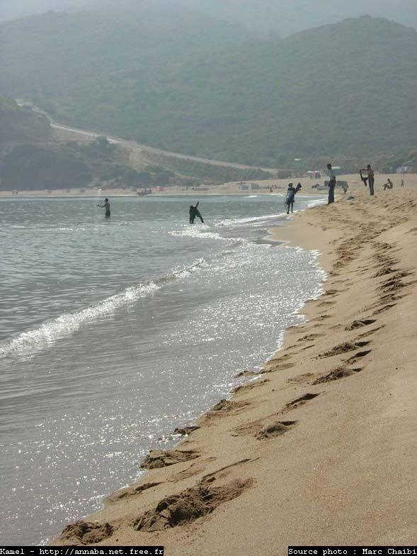 منظر لشاطئ