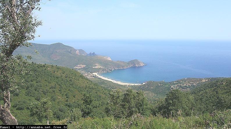 صورة شاملة لشاطئ