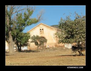 مبنى من العهد الإستعماري بضواحي الڨصيبة ما بين أرزيو و سيدي بن يبقى